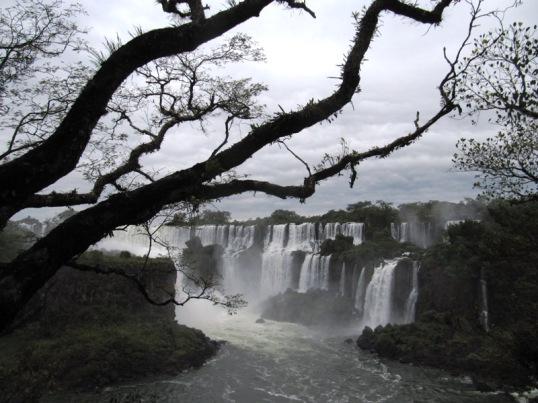 Trees and cascadas