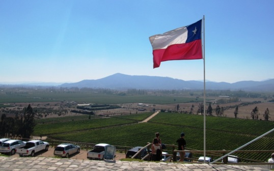 Vinyards and Chilean flag