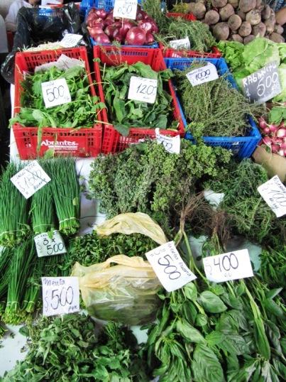 Vega herbs