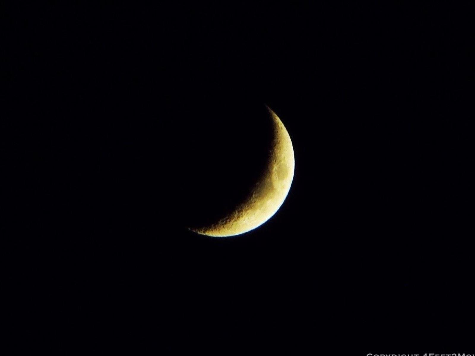 Artemis Symbol ...