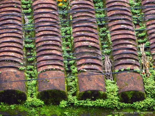 Hoi An roof tiles