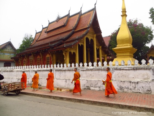 Monks performing their morning alms walk