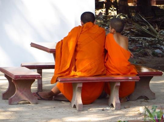 Monk mentorship