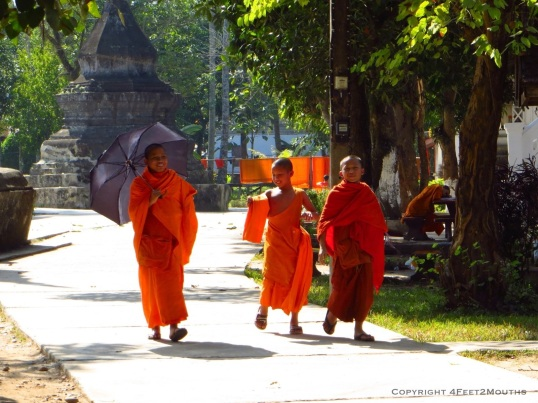 Monks enjoying a walk in the sun