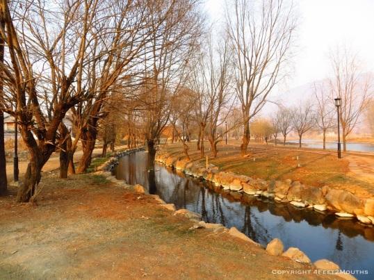 Winter park in Shaxi