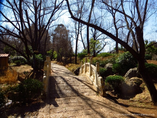 Small bridge at the park