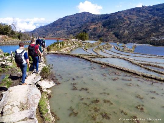 Hiking with new friends through Duoyishu terraces