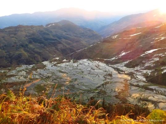Sunset on the rice terraces Lao Huzui