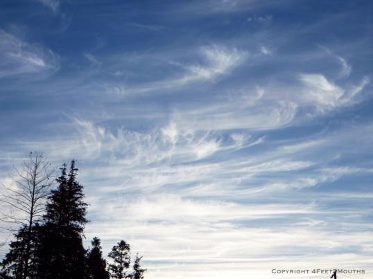 Whispy blue sky