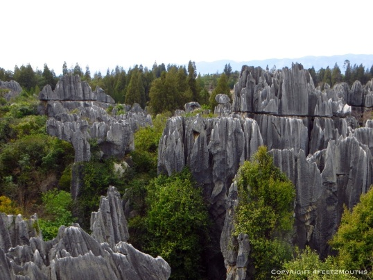 Overlooking the stone forest