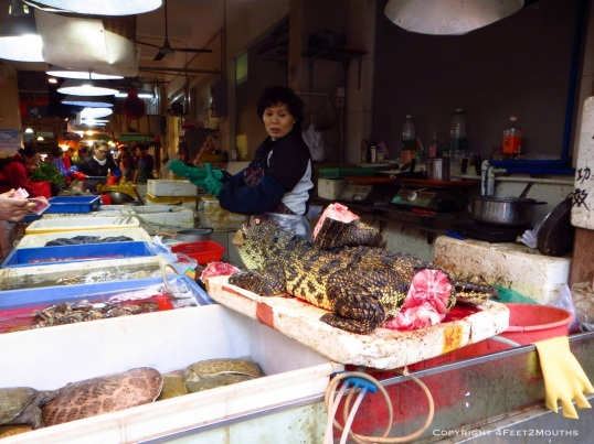 Alligator at the market