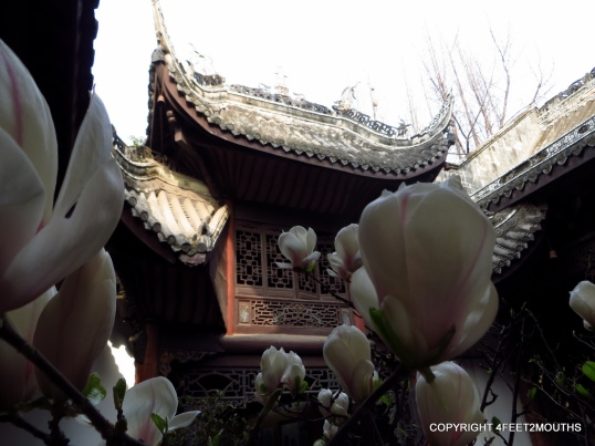 Blossoming flowers and a Chinese backdrop