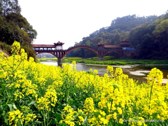 Arch bridge and blossoming flowers
