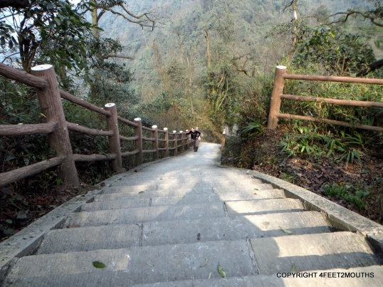 Stairway down