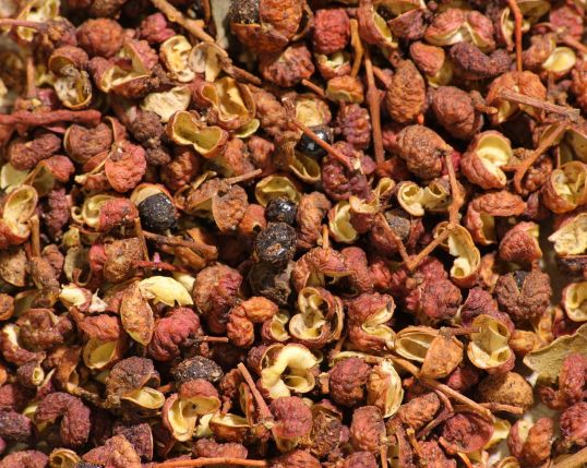 Sichuan peppercorns (photo credit: wikicommons)
