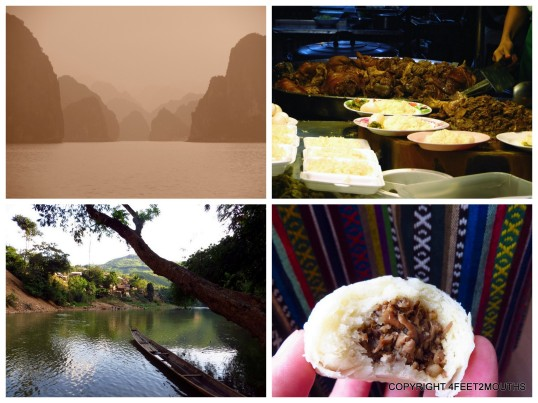 Clockwise from left: Halong Bay, Thai stewed pork, mushroom bun, Laotian jungle