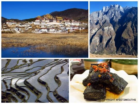 Clockwise from left: monastary in Zhongdian, Jade Dragon Snow Mountain, stinky tofu, rice terraces