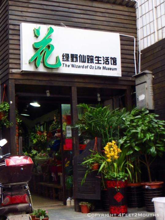 Mystical flower shop in Changsha