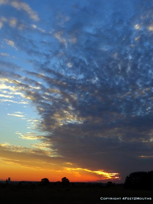Sunrise on the Camino de Santiago