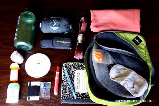 4feet2mouths packing essentials