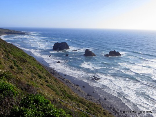 Northern California Coastline