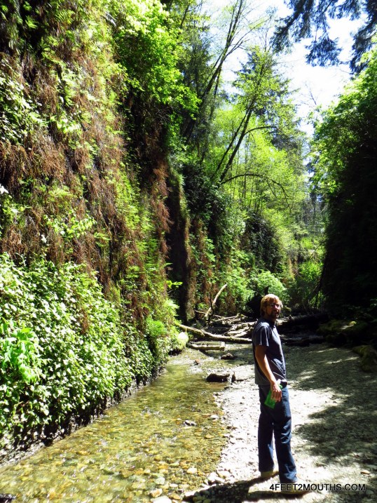 Nathan in Fern Canyon