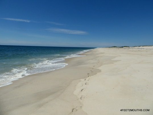 Wide open expanse of beach