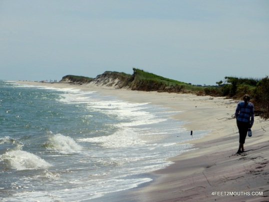 Near the tip of Old Inlet which was breached by Hurricane Sandy