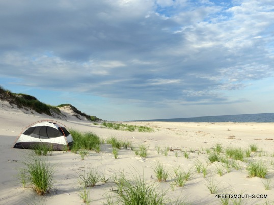 Our secluded campsite among the dunes