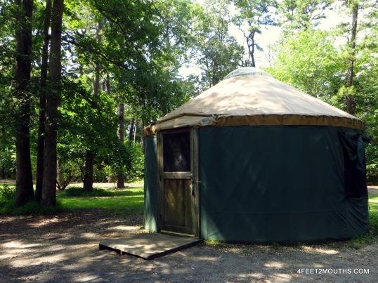 Yurt sweet yurt
