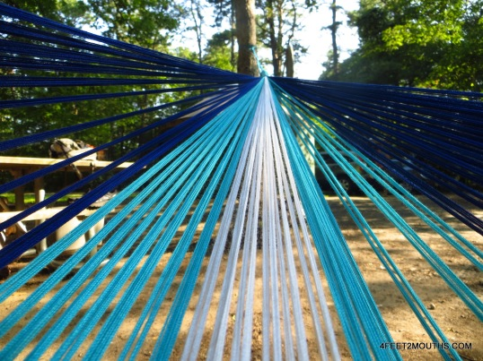 Hammock views