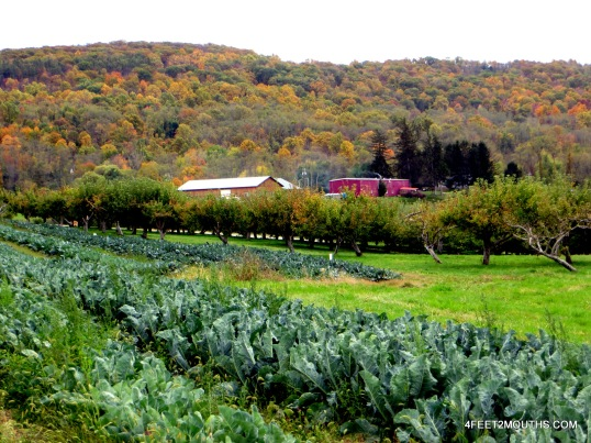 Fishkill Farms barn, orchards and vegetables